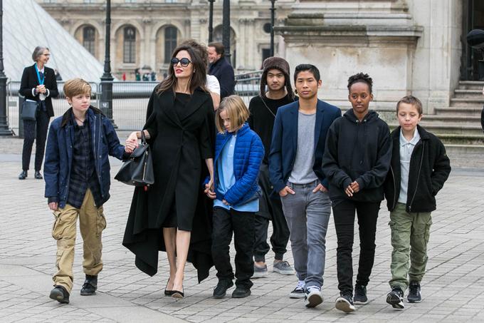 Jolie và 6 người con.