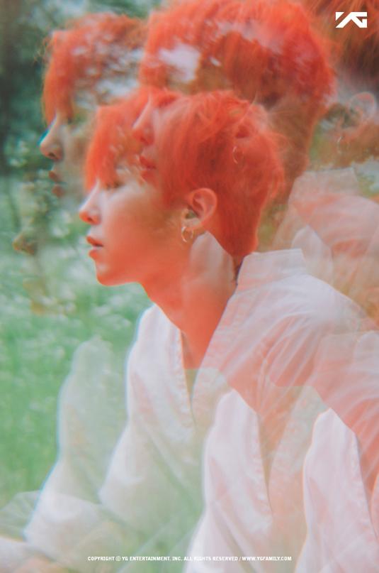 G Dragon hiện có khoảng 21 triệu USD, anh đứng trong danh sách những nghệ sĩ giàu nhất Hàn Quốc hiện nay. Nam ca sĩ có một sự nghiệp solo thành công rực rỡ, đồng thời còn phát triển thương hiệu thời trang PeaceMinusOne của mình lớn mạnh.