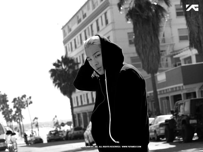 Taeyang hiện sở hữu khối tài sản 13,7 triệu USD. Hiện tại, ca sĩ này đang trong quân ngũ.