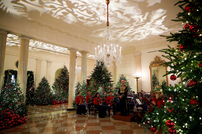 The Cross Hall is filled with trees decorated for the holidays, as projections of foliage run the length of the ceiling