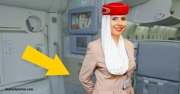 Vật dụng bí ẩn tiếp viên hàng không giấu sau lưng khi chào khách