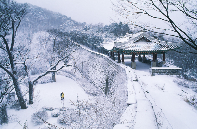 Đối với những người yêu thích phim Hàn Quốc, đảo Nami là điểm đến hấp dẫn bởi đây là nơi đã tạo ra những thước phim Bản tình ca mùa đông lãng mạn và nhiều lưu luyến. Khi mùa đông tới, hai hàng cây thẳng tắp rực rỡ lá vàng được thay bằng hàng cây cao phủ trĩu tuyết trắng mang vẻ đẹp rất riêng.