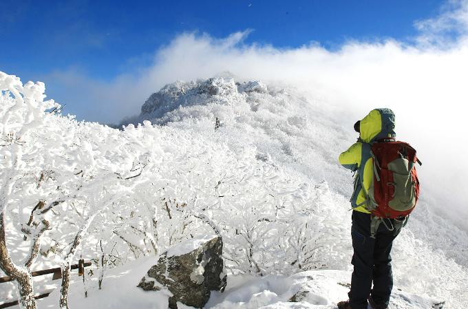 Khu rừng tuyết trắng như trong cổ tích ở Hàn Quốc - 9