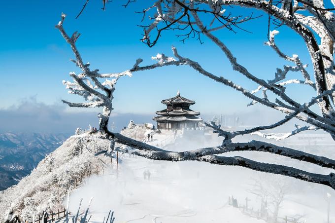 Mùa đông ở đây đến từ khá sớm. Từ tháng 11, dân du lịch khắp nơi đã đổ về đỉnhHyangjeokbong có độ cao là 1.614m là đỉnh cao nhất của núi Deogyusan để chiêm ngưỡng khung cảnh thần tiên. Đây cũng là ngọn núi cao thứ 4 ở Hàn Quốc.