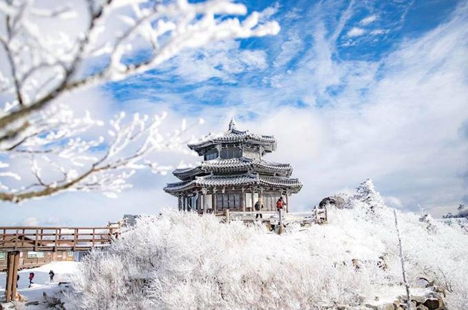 Khu resort Muju trên đỉnh núi dành cho những du khách yêu thích bộ môn trượt tuyết và các môn thể thao dưới trời lạnh. Đỉnh núi này còn được mệnh danh là đỉnh Alps của Hàn Quốc khi vào mùa đông, vạn vật đều đóng băng toàn bộ.
