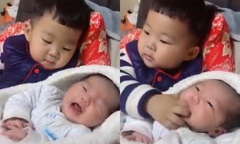 Anh trai cho em bé đang đói ngậm ngón tay