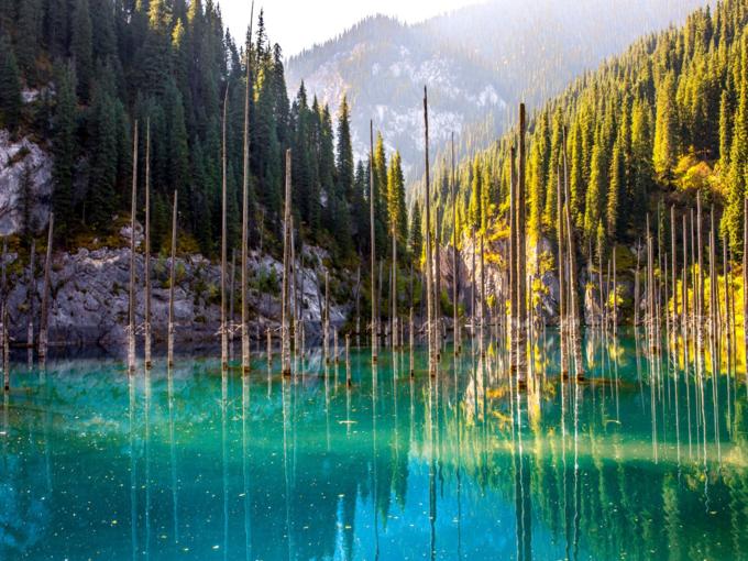 Hồ nước bí ẩn với loại cây mọc ngược dưới đáy