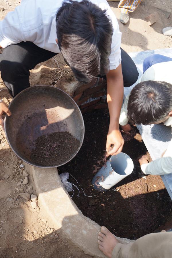 Những con giun đất được sử dụng để làm bồn cầu mà không cần đến hệ thống xả nước tại Ấn Độ