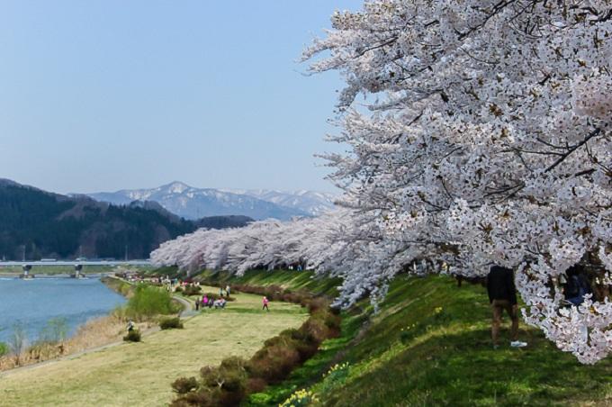 Kakunodate nằm gần như ở trung tâm của Akita.Thành phố vẫn giữ lại dấu vết từ 320 năm trước đây với cây cổ thụ thẳng đứng, những ngôi nhà samurai cổ kính. Ở đây nổi tiếng với cây anh đào khóc (shidare-Zakura) được lưu giữ cho đến ngày hôm nay. Trong thành phố có 152 cây đào được xếp vào di tích tự nhiên của quốc gia. Hai đường hầm dài với nhiều cây anh đào mọc dọc theo bờ sông Hinokinai-Gawa.