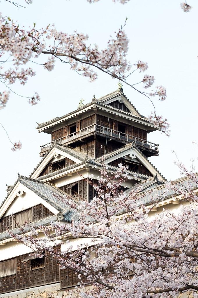 Là biểu tượng của tỉnh Kumamoto,lâu đài Kumamoto được xây dựng khoảng 400 năm trước đây. Từ khi được xây dựng đến nay, nơi đây đã nhiều lần trở thành vũ đài lịch sử quan trọng. Vào mùa xuân, hơn 800 cây hoa anh đào nở rộ, đua nhau khoe sắc xung quanh nơi này. Tất cả tạo nên một cảnh sắc tuyệt vời, thu hút đông đảo du khách từ khắp nơi đổ về chiêm ngưỡng.
