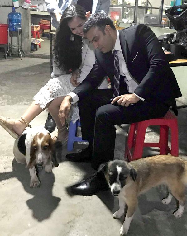 Võ Hạ Trâm bất ngờ khi đàn chó lạ quấn quýt bên chân chồng cô.