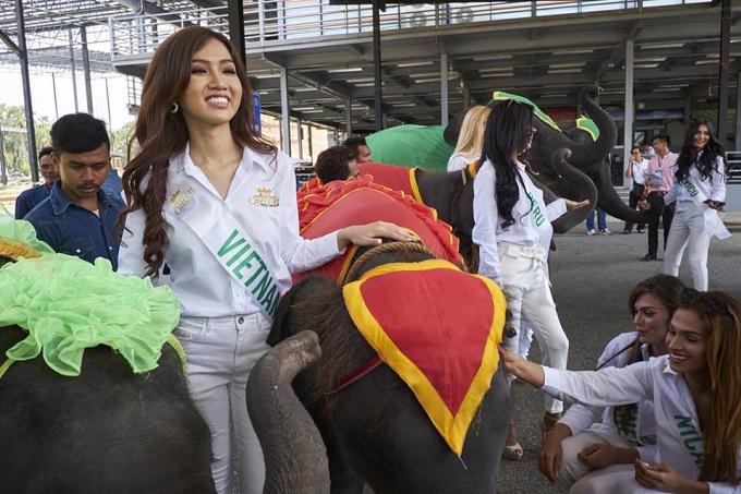 Hành trình dự thi Hoa hậu Chuyển giới của Đỗ Nhật Hà - 5