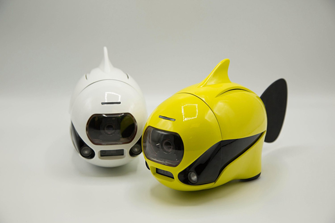 Robot bơi và chụp hình dưới nước cho người dùng. Ảnh: ROBOSEA.