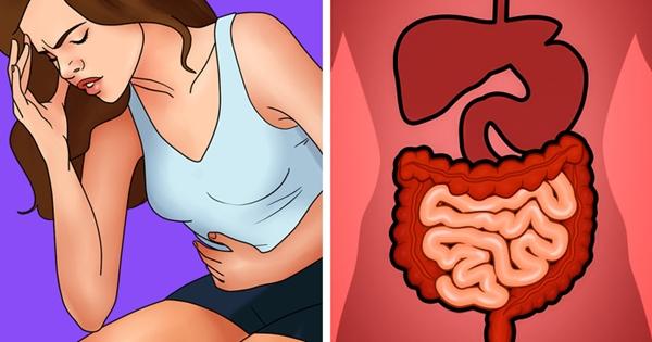 Táo bón Chất bảo quản, hương liệu hay chất tạo màu cùng nhiều loại hóa chất khác trong thực phẩm hàng ngày là nguyên nhân khiến độc tố tích tụ trong ruột và dạ dày.