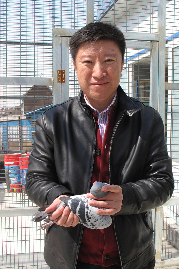 [CaptiXing Wei, who raises pigeons for lucrative races in China, is shown in Beijing with his favorite bird, Ike. He sells Ikes offspring to wealthy buyers for $15,000.