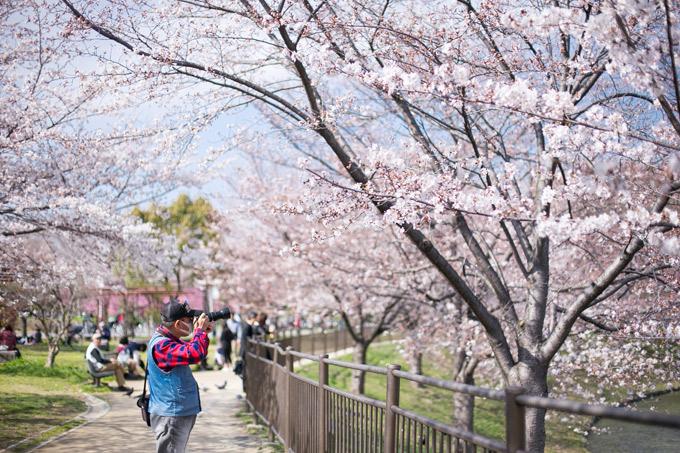 Ngoài ra còn có một khu vườn Nhật Bản với một nhà trà đạo ở Hanamizuki Hall và Vườn Quốc tế sử dụng nhiều loại đất từ các nơi khác nhau trên thế giới. Ngoài ra, công viên có suối và thiết bị sân chơi nơi trẻ em có thể chơi, nơi cắm trại và nướng thịt, sân cưỡi ngựa, bể bơi tất cả các mùa và trung tâm thể thao, trong số các cơ sở giải trí và quan sát thiên nhiên và trải nghiệm khác. Đó là nơi hoàn hảo để dành cả ngày.