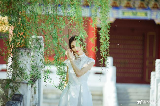 Fan không nhận ra Cô Cô Lý Nhược Đồng vì quá trẻ - 5