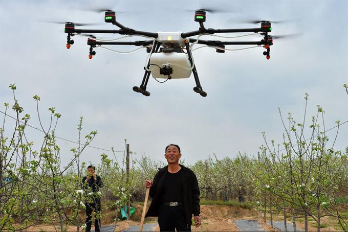 Người nông dân sẽ bớt được lượng công việc nặng nhọc khi sử dụng máy bay không người lái. Ảnh: SCMP.