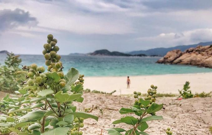 Là bãi tắm tự nhiên, chưa qua bàn tay khai thác nhiều của con người nên khung cảnh vẫn giữ được nét hoang sơ giống như một hoang đảo. Màu của biển thay đổi theo từng khung giờ khác nhau trong ngày, sáng sớm tinh mơ sẽ là màu xanh da trời nhạt, mang cho bạn một cảm giác bình yên đầu ngày. Mình thường dậy rất sớm để chỉ ngồi ngắm biển đổi từ màu xanh trời qua xanh ngọc khi mặt trời lên cao. Buổi chiều biển có màu cam nhạt đôi khi pha sắc hồng tím nữa, hoàng hôn xuống rất nhanh trên biển, chị Mây Phạm mô tả.