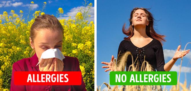 Giảm các triệu chứng dị ứng theo mùa Chà là có tác dụng tích cực trong việc giảm viêm mũi dị ứng theo mùa nhờ hàm lượng cao chất chống oxy hóa.