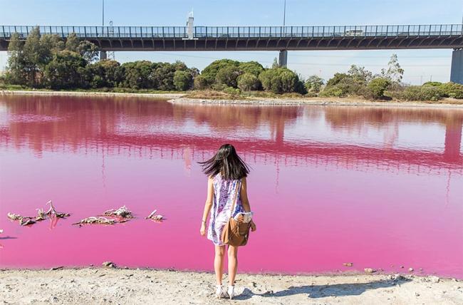 Hồ nước màu hồng ở Australia