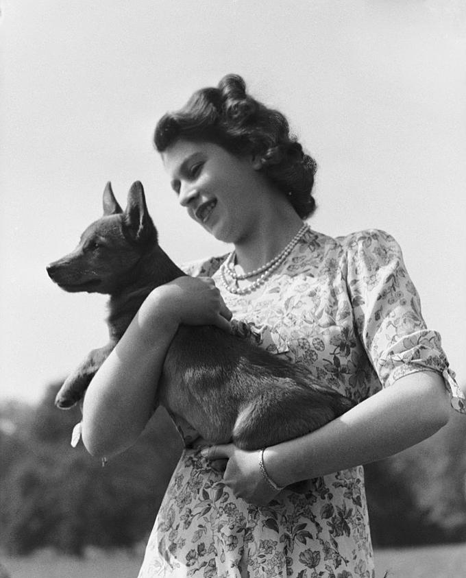 Nữ hoàng Elizabeth hồi trẻ và chó cưng. Ảnh:Hulton Archive.