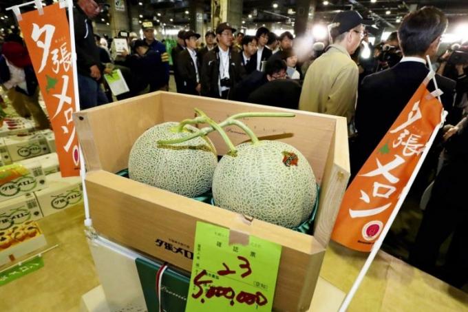 Cặp dưa Yubari giá 5 triệu yên.