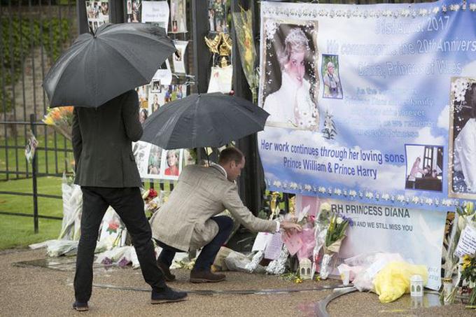 William đội mưa ra trước cửa cung điện để đọc và sửa lại những bó hoa mà người hâm mộ đặt lại khi tưởng nhớ ngày mất của cố Công nương Anh. Ảnh: PA.