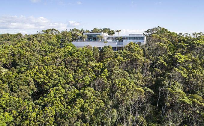 Rừng cây bao quanh giúp dinh thự biệt lập với những ngôi nhà xung quanh.