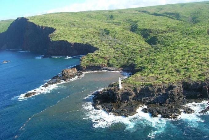 Năm 2012, Ellison đã chi 300 triệu USD để mua 98% đảo Lanai thuộc quần đảo Hawaii, Mỹ.