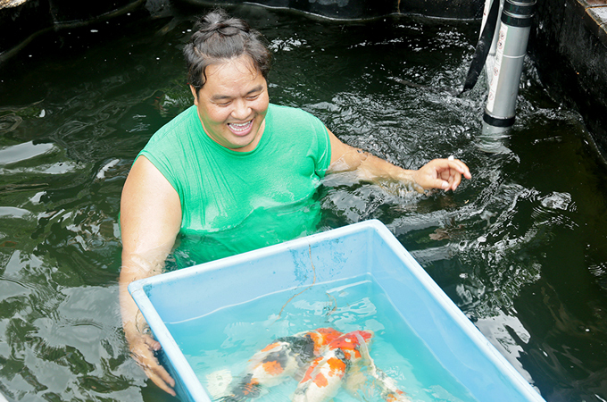 Hoàng Mập vừa xây xong hồ cá Koi trong biệt phủ rộng 1.600 m2 ở huyện Trảng Bom,tỉnh Đồng Nai. Anh mua 36 con cá nhập từ Nhật Bản về thả ở hồ này. Mỗi con cá có giá lên đến hàng trăm triệu đồng.