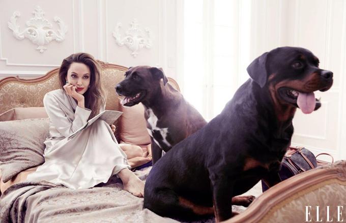 Với Jolie, phụ nữ không nên điều chỉnh bản thân theo sự mong đợi của xã hội. Hãy lắng nghe chính mình, bạn có thể lựa chọn bước tiếp và học hỏi, thay đổi, cô nói.