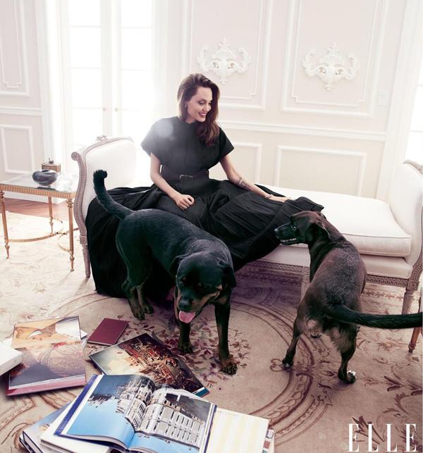 Angelina Jolie khoe nhan sắc ở tuổi 44 - 6