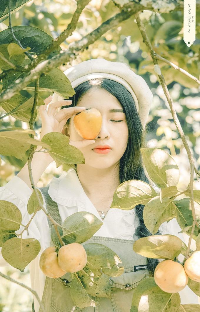 Vườn hồng như cổ tích ở Đà Lạt