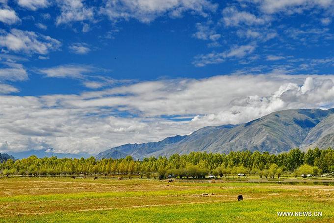 Nằm tại thôn Bagaxue, thị trấn Tajie, huyệnDagze, thành phố Lhasa, hồ Kim Sắc trở thành điểm đầu tư thu hút du lịch, cải thiện đời sống của người dân Tây Tạng. Một sự án trị giá 360 triệu nhân dân tệ đã bắt đầu triển khai từ tháng 8 để biến thắng cảnh hoang sơ này trở này một khu du lịch sinh thái phức hợp.