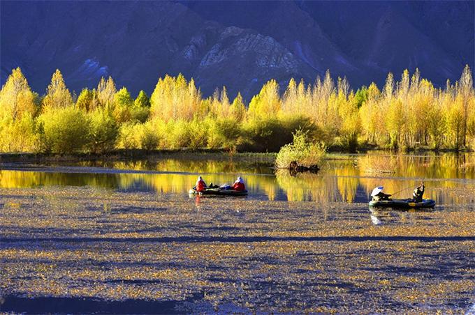 Hồ Kim Sắc rộng 2,5 km2. Diện tích không lớn nhưng cảnh quan nơi đây khiến du khách ngẩn ngơ. Mùa thu ở Tây Tạng bắt đầu khá sớm. Khoảng tháng 9, nhiều rặng cây ven hồ đã ương ương, chuyển màu.