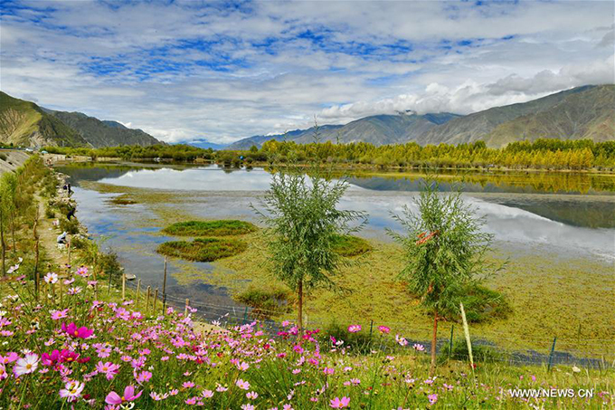 Có nhiều cách để đến với thành phố Lhasa, thủ phủ khu tự trị Tây Tạng như bay thẳng từ các thành phố lớn ở Trung Quốc như Bắc Kinh, Thượng Hải, Quảng Châu, Thành Đô, Trùng Khánh... hoặc đi tàu cao tốc từ những nơi này. Khi đến Lhasa, bạn có thể bắt shuttle bustừ đây về huyện Dagze, sau đó tiếp tục bắt minibus để đến khu sinh thái hồ Kim Sắc.