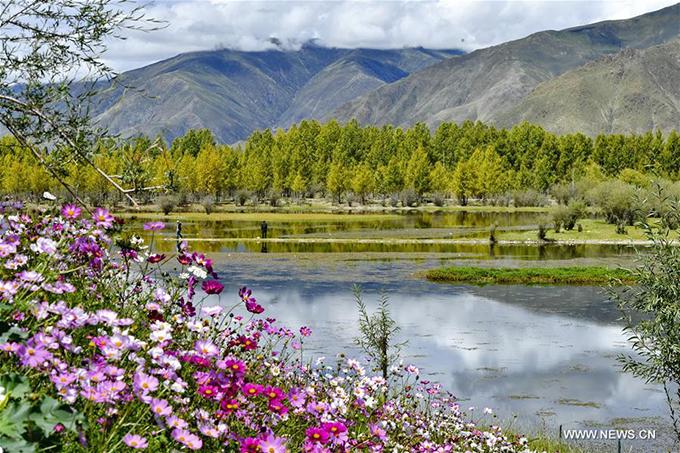 Không phải chỉ tới mùa thu, hồ Kim Sắc mới đẹp mà đến đây vào bất kỳ thời điểm nào trong năm, bạn cũng có thể chiêm ngưỡng thiên nhiên hoang sơ, thoát tục với trăm hoa đua nở rực rỡ cùng hệ sinh thái đặc biệt phong phú.