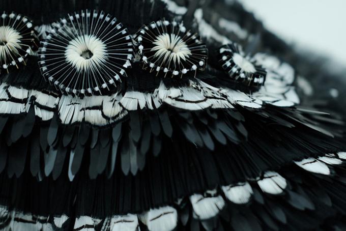 Thiết kế mang đậm dấu ấn dòng thời trang haute couture của Công Trí cũng được hoa hậu Đỗ Mỹ Linh yêu thích.