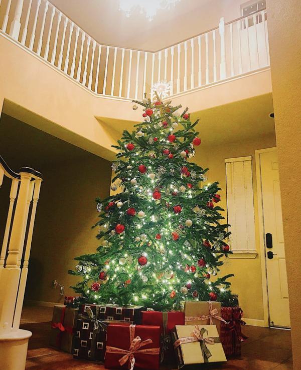 Ngôi nhà có hai tầng. Khu vực cầu thang thường được làm nơi đặt cây thông cùng nhiều hộp quà vào dịp Giáng Sinh.