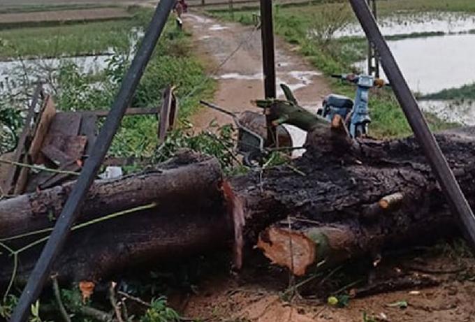 Lực lượng chức năng cắt cây gãy ra từng khúc để đưa thi thể nạn nhân ra ngoài.