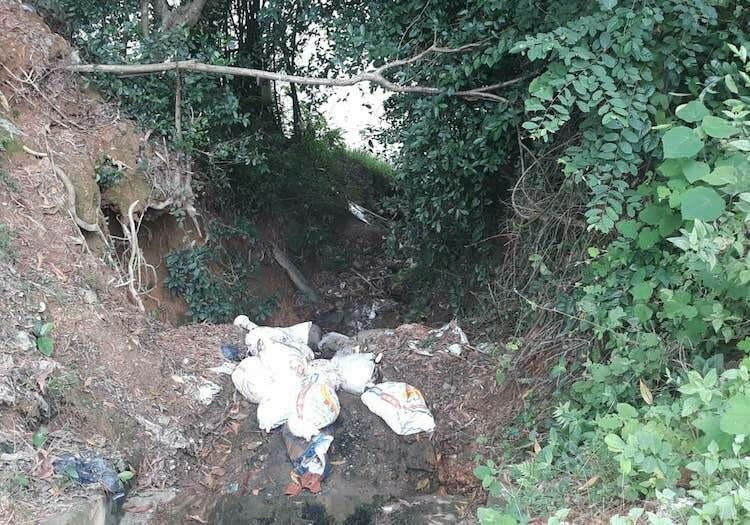 Địa điểm phát hiện các bao tải chứa lợn chết nằm cách mép sông không xa.