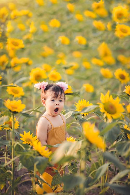 Suri vô tư, hồn nhiên ngáp giữa vườn hoa, không lạ trước ống kính máy ảnh.