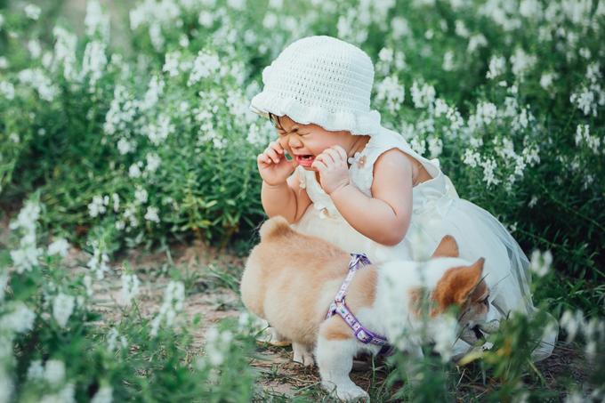 Bộ ảnh ở vườn hoa được bấm máy lúc bé Thảo Vy (biệt danh: Suri)gần 2 tuổi. Khi chụp ảnh cho bé, nhiếp ảnh gia Lã Anh mượn được một chú chó Corgi để trợ diễn cho bé.