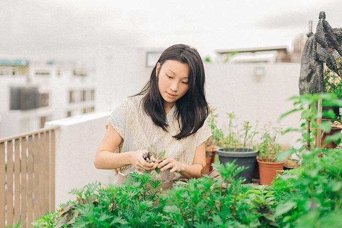 Hãy trồng cây! Khí hậu đang biến đổi theo hướng tiêu cực và nó sẽ không dừng lại sớm. Tất cả chúng ta bằng cách nhỏ bé là trồng cây và giúp thiên nhiên chống lại sự biến đổi đó, Joanna kêu gọi.