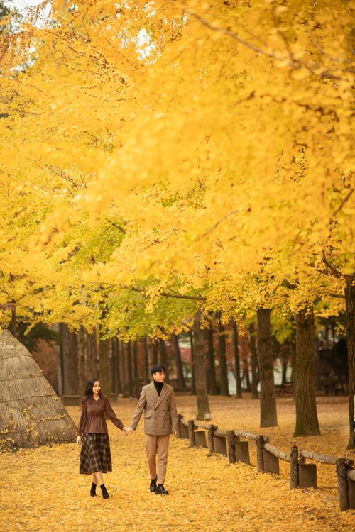 Bộ hình hướng tới sự tự nhiên, chân thực. Uyên ương tự do tản bộ trên những con đường dài, ngắm thảm lá vàng đỏ đang dần chuyển mình trong tiết trời thu đảo Nami.
