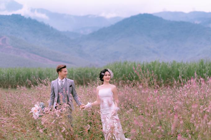 Đồng hoa mào gà, điểm chụp ảnh cưới mới tại Đà Nẵng