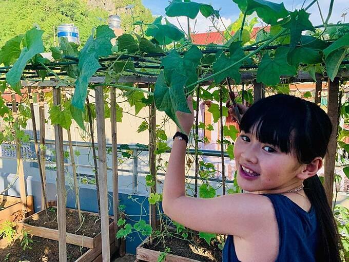 Chị Thanh Quý cho biết sản lượng rau củ từ khu vườn có thể đáp ứng 90% nhu cầu cho gia đình. Thỉnh thoảng, chị còn đem tặng bạn bè, họ hàng và những người hàng xóm các loại rau trái hái được từ vườn nhà.