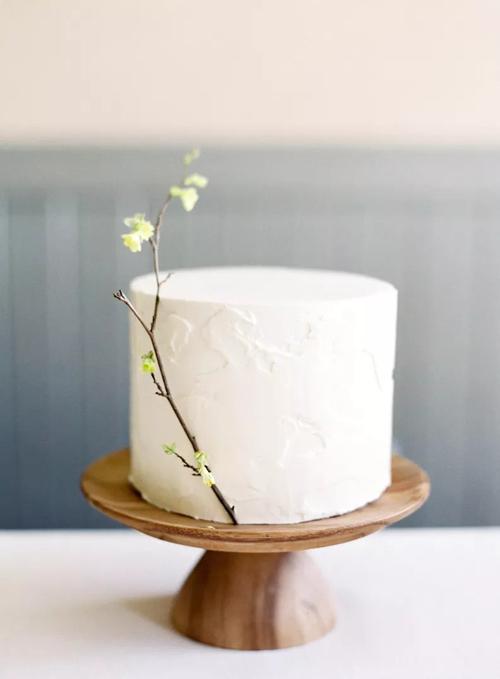 Bánh cưới với nhành cây dành cho hôn lễ tối giản. Mẫu bánh màu trắngkhông trang trí thêm hoa văn gì và chỉ có một tầng duy nhất.
