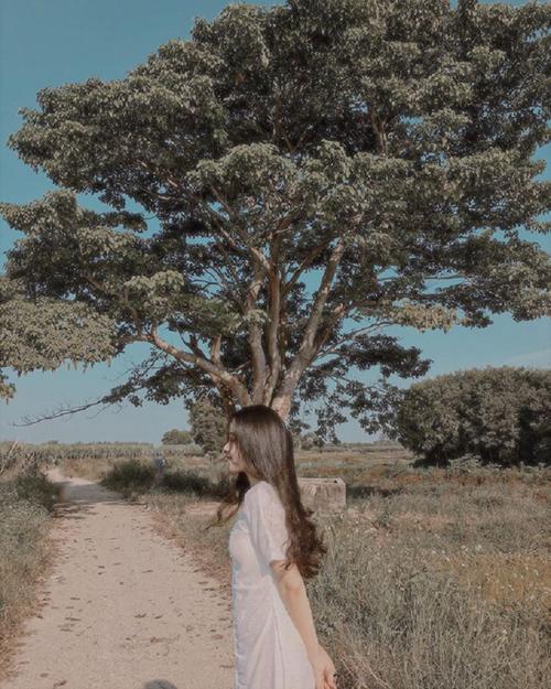 Làng Đo Đo trong phim Mắt biếc - 6